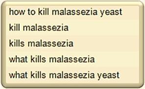 Kill Malassezia -MQ